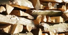 Arbeiten mit der Brennholzsäge